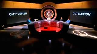 QI Series C Episode 9 - Creatures