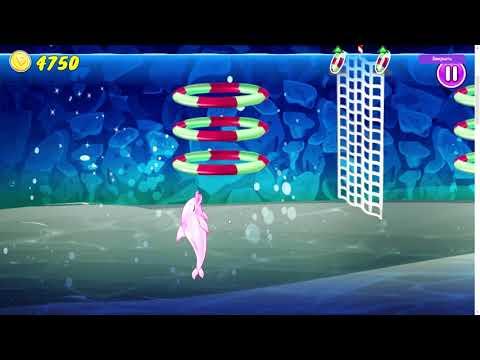 Игра Шоу дельфинов 6   играть онлайн