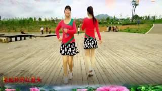 金盛小莉广场舞 九九女儿红 双人对跳