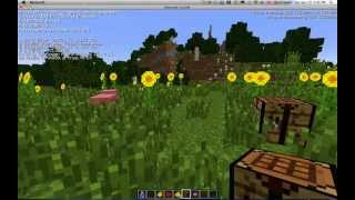 1.7 Minecraft New Biome Sunflower Plains 13w39b - with seed and location