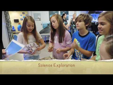 Marine Discovery at Flandrau Science Center!
