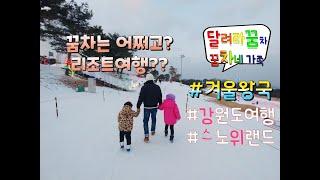 강원도여행/태기산 /스노위랜드/홍천비발디파크/집시가족/…
