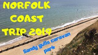 SANDY GULLS PT 1 - ROSIE CAM & AERIAL SHOTS 2019