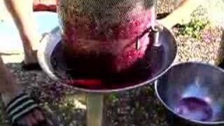 Wine Pressing Part 2