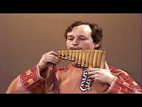 Струнные щипковые музыкальные инструменты