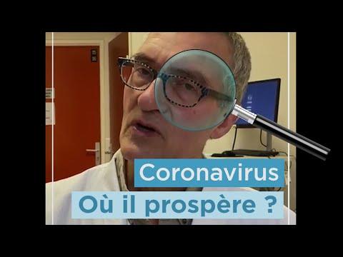 Coronavirus: quelle durée de vie sur les surfaces ? Professeur Lucet #Pour une Meilleure santé