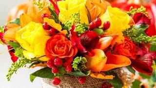 AMF -  лучший сервис заказа и доставки цветов  в любой город мира(, 2015-02-09T13:34:15.000Z)