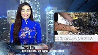 VIETLIVE TV ngày 20 10 2019