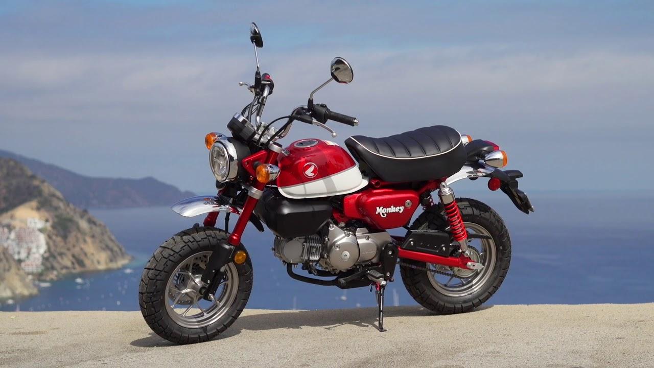 2019 honda monkey first ride