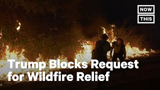 Trump Admin Reverses Course on CA Wildfire Relief | NowThis