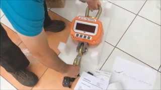 The Scale Company OCS Crane Scale demo