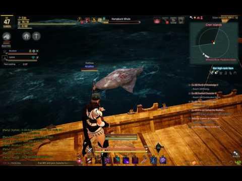 Black Desert Hunting Humpback Whales