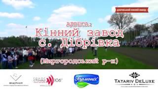 Кінне свято в Дібрівці