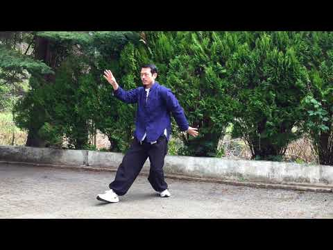 Tai Chi - Yang Style - 108 forms - part