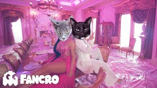 KAROL G, Nicki Minaj - Tusa (Cover Gatos)