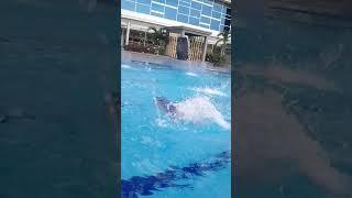 Afifah Belajar Berenang Di Gp Vlog 2