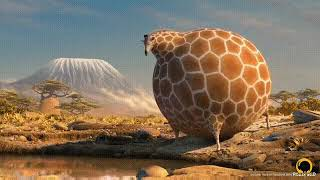 Смешное видео про жирафа.