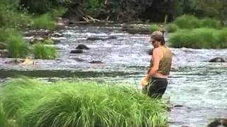 canoer sur le Tarn à Trébas Jean Pierre Espitalier