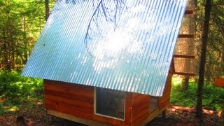 Deek's $300 Vermont A-Frame Cabin (Tiny House Workshop)- w/WOOD TURTLE sighting