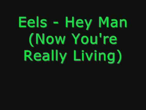 Eels - Hey Man Now You're Really Living