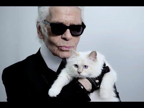 Карл Лагерфельд кошка Шупетт наследница 2019★Karl Lagerfeld Cat Chupett Heiress 2019