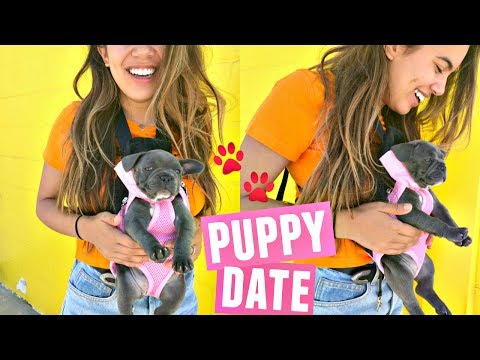 PUPPY'S FIRST PLAY DATE AT SANTA MONICA PIER!🐾 (Cutest Thing Ever)