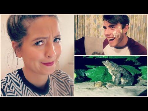 September Vlogs, Cake War & Snails