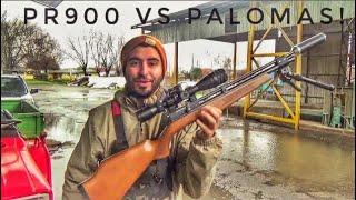 PR900 calibre .177   Paloma JUE!   Prte 1 de 2