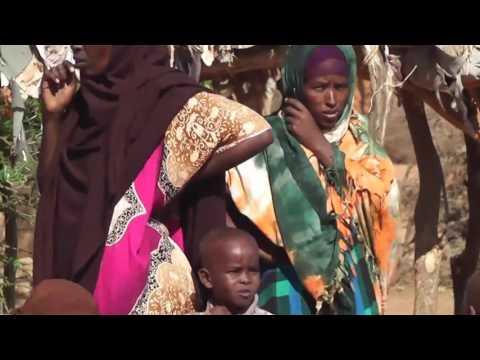 Somaliland Drought in Dagmaada Cabdi Dheere
