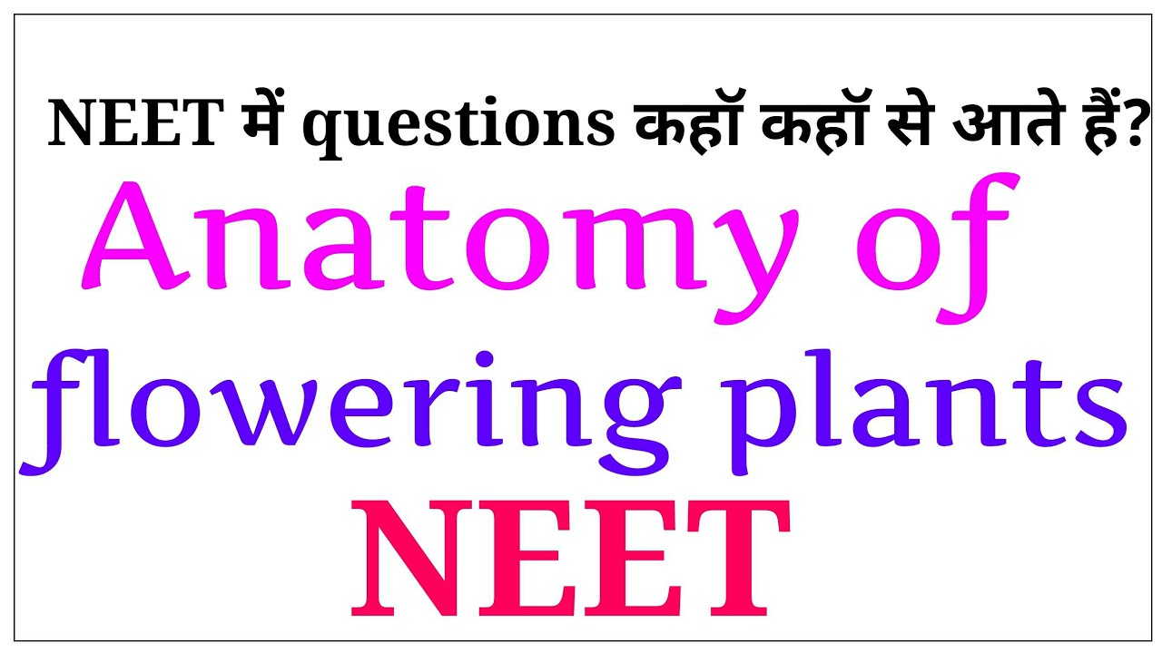 Anatomy of flowering plants/ important points for NEET / NEET 2019 ...