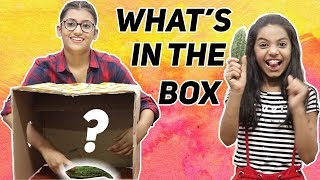 What's in the Box Challenge | SAMREEN ALI