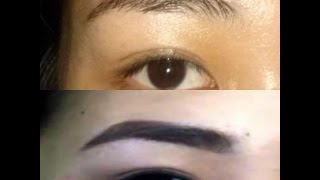 EASY AND QUICK EVERYDAY EYEBROW ROUTINE Thumbnail