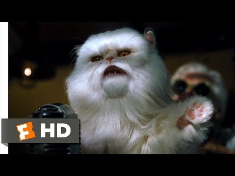 Cats & Dogs (8/10) Movie CLIP - Mr. Tinkles Fires Everyone (2001) HD