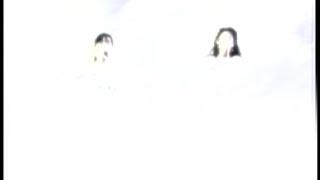 2ndシングル『アマリリス』 1988.9.7リリース 映像は『WINK VISUAL MEMO...
