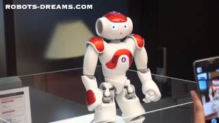 NAO Robot Goes to Work in a Japanese Bank