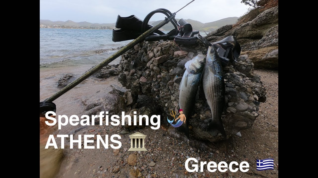 Spearfishing South of Athens, Greece 🇬🇷🌊🐟March 2020
