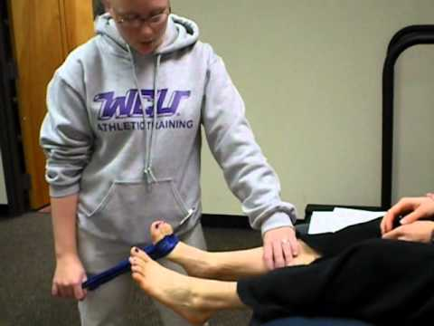 Athletic Training Domain: Treatment and Rehabilitation