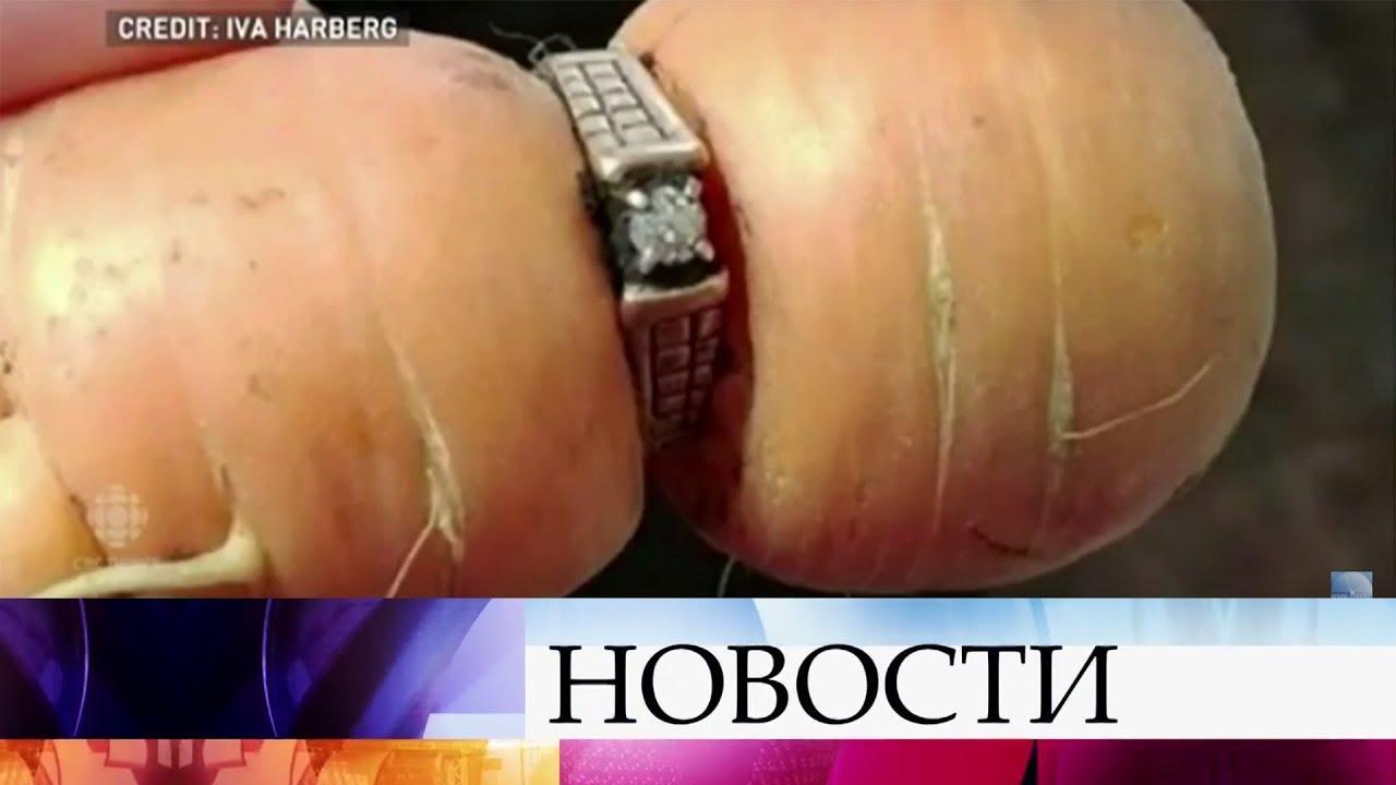 Потерянное обручальное кольцо нашлось на морковке 13 лет спустя новые фото