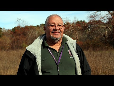 Conserving The Sweetgrass Tradition   Mashpee Wampanoag Tribe