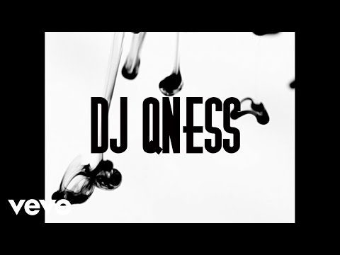 DJ Qness - Everything (Official Video)