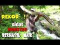 - MANCING SIDAT MONSTER DI SUNGAI KECIL  AUTO STRIKE| EEL FISHING | BIG EEL | DEK DOER