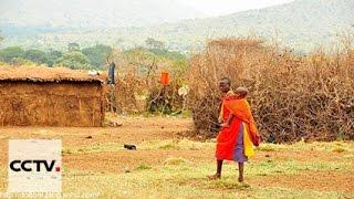 Документальные фильмы: Очарование Кении Серия 1