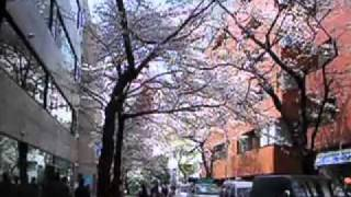 クレヨン社6thアルバム「誰にだって朝陽は昇る」(2004年)より「懐かし...