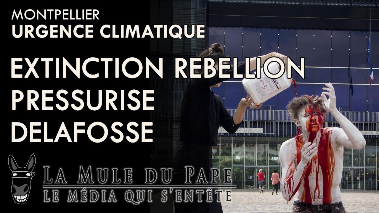 État d'urgence climatique : Extinction Rebellion pressurise Delafosse