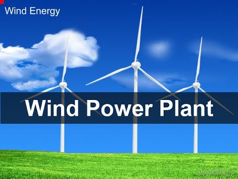 Dynamic Models for Wind Turbines and Wind Power Plants