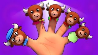 Быки Палец Семья | детский стишок | Kids Rhymes | Music For Babies | Kids Song | Bulls Finger Family