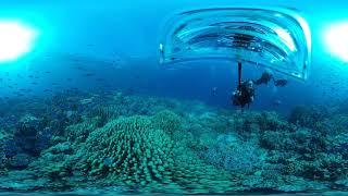 Insta360 One X - Diving Shell - Safaga 2018