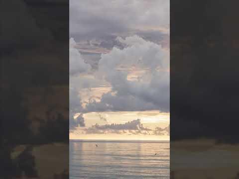 Download 40 km/hr - Terracotta  [ cover ]   ARYEYEYA