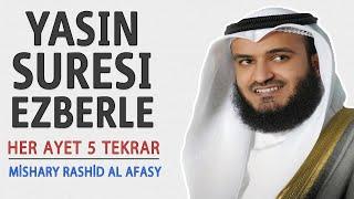 Yasin suresi ezberle her ayet 5 tekrar (Mishary Rashid al Afasy)