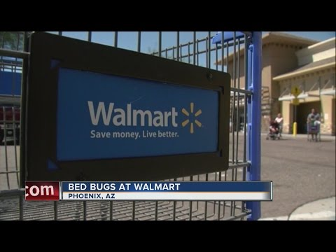 Bed bugs found at Arizona Walmart